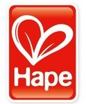 Hape International Toys
